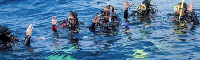 Course_Pro_Diving